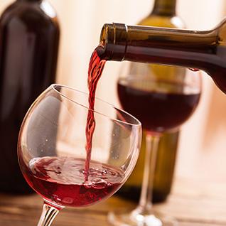 Lo mejor para disfrutar del vino y la enología