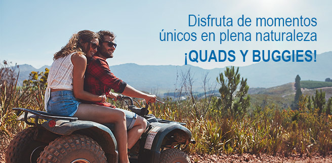 Quads y buggies